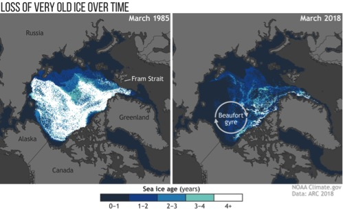 Mare di Bering