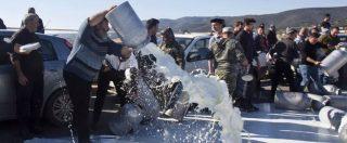 Sardegna, prezzi del latte ovino: Antitrust apre un'istruttoria nei confronti dei produttori di pecorino romano Dop