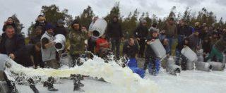 """Proteste latte, salta tregua di tre giorni: no all'accordo. Movimento pastori: """"72 centesimi al litro sono passo indietro"""""""
