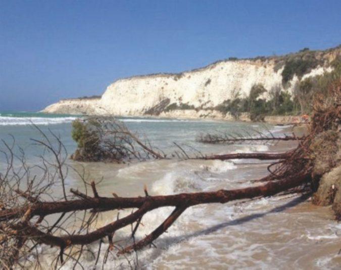Il mare si è mangiato la spiaggia e il bosco: dalla Regione quattro milioni, ma ormai è troppo tardi