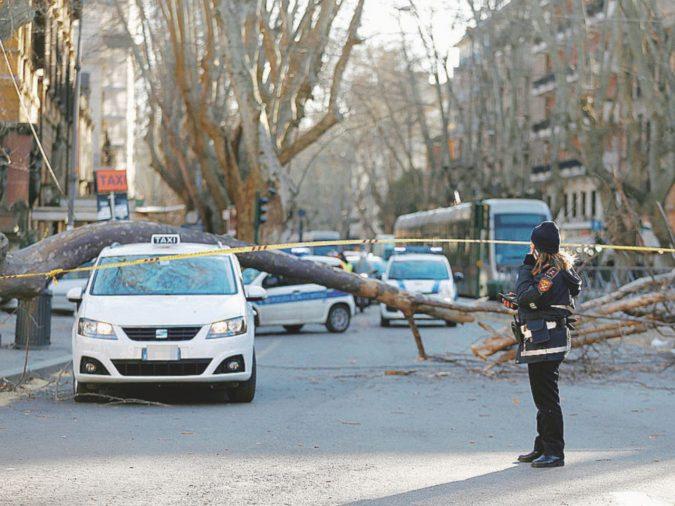 Maltempo al Centro-Sud: cadono muri e alberi, 4 morti. Una nave si arena in Puglia