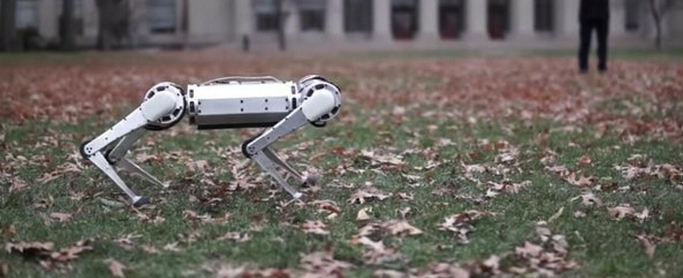 Mini Cheetah è il robot che fa i salti mortali all'indietro come un agile cagnolino