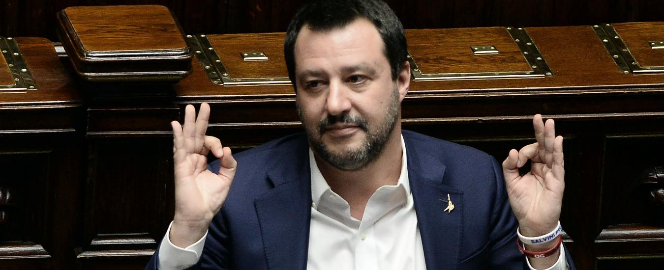 """Vaccini, Salvini scrive a Grillo: """"Decreto per non allontanare i bimbi dalle scuole"""". La ministra: """"Ci penserà il Parlamento"""""""