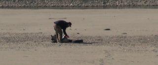 """Mirko, il ragazzo che pulisce le rive del Po: """"Raccolgo plastica, copertoni e ferro. Sto bene e lascio un posto migliore"""""""