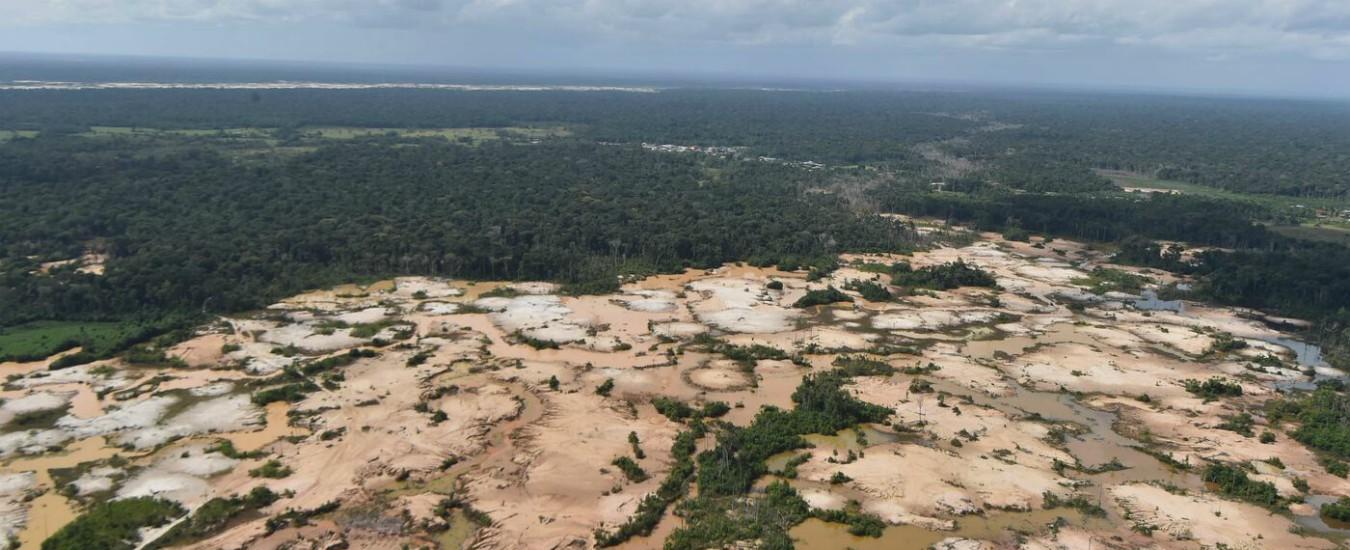 Amazzonia, 13 milioni di ettari di foresta a rischio distruzione per guerra dei dazi tra Usa e Cina: al loro posto campi di soia