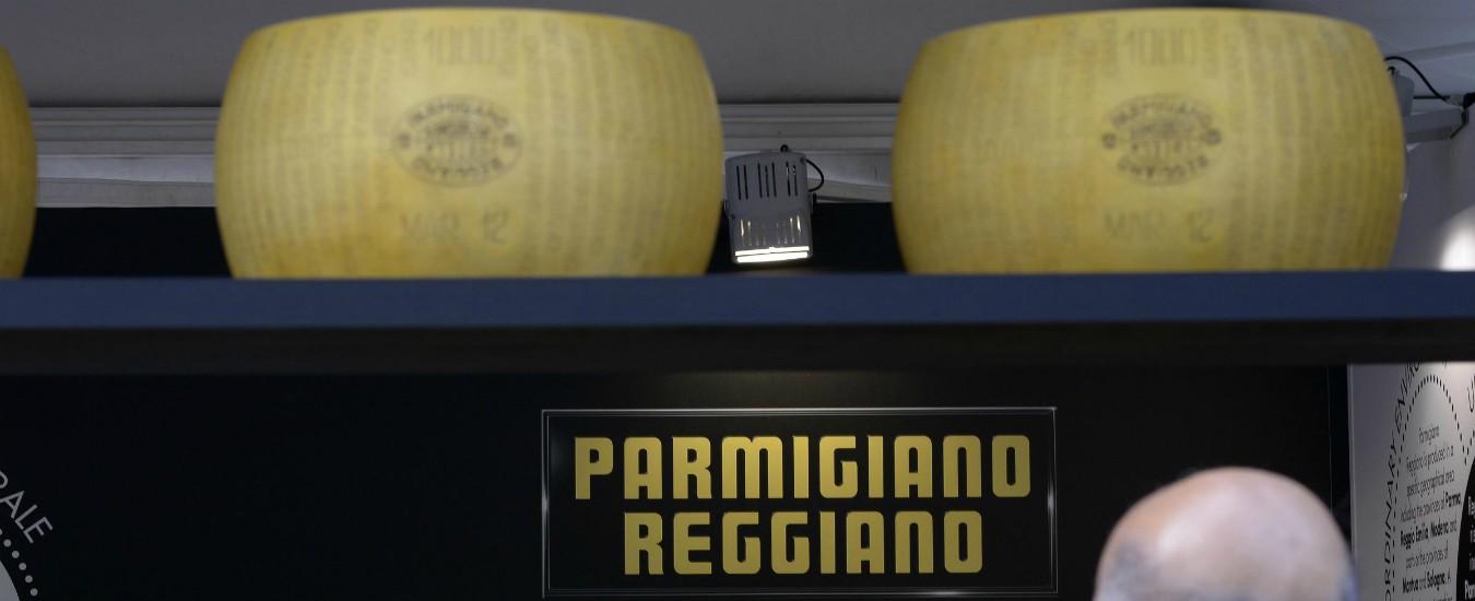 """Parmigiano reggiano Dop, sequestrate 196 forme di formaggio. """"Accertato utilizzo di latte non conforme"""""""