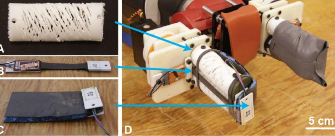 RoCycle è il robot che ricicla i rifiuti distinguendo al tatto la carta dalla plastica
