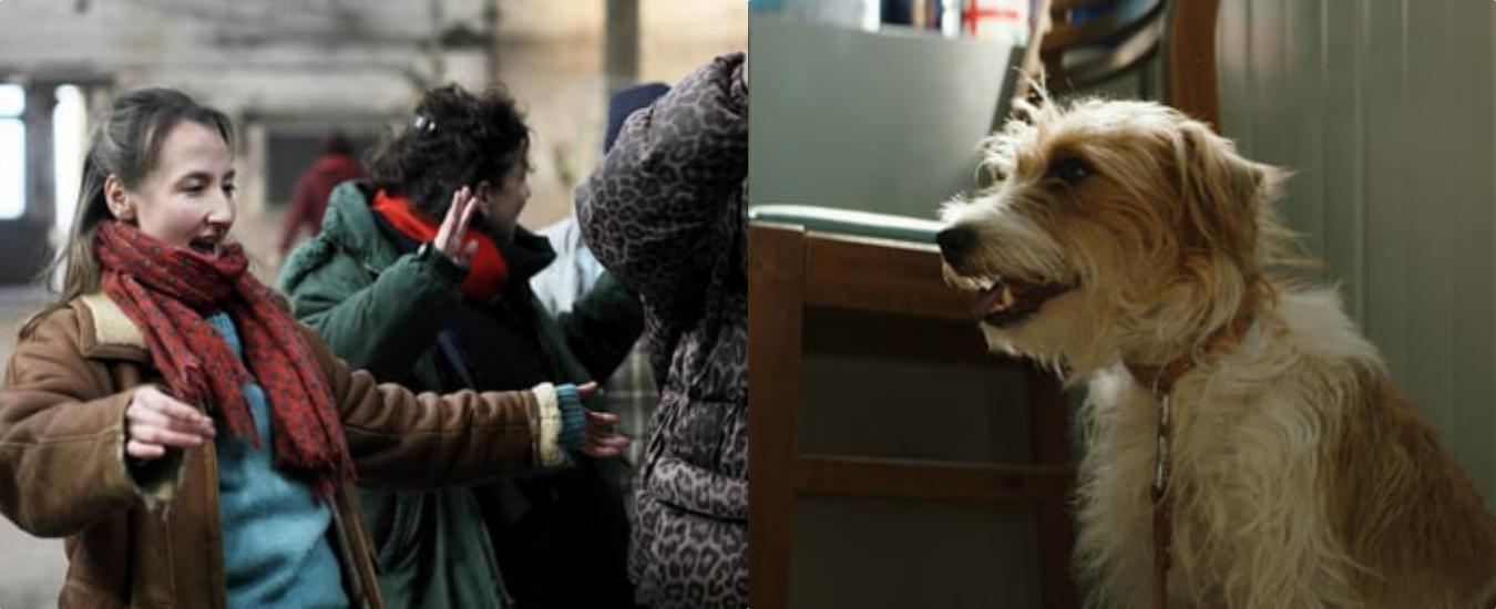Le invisibili e Torna a casa, Jimi!, due film da vedere per sorridere e riflettere