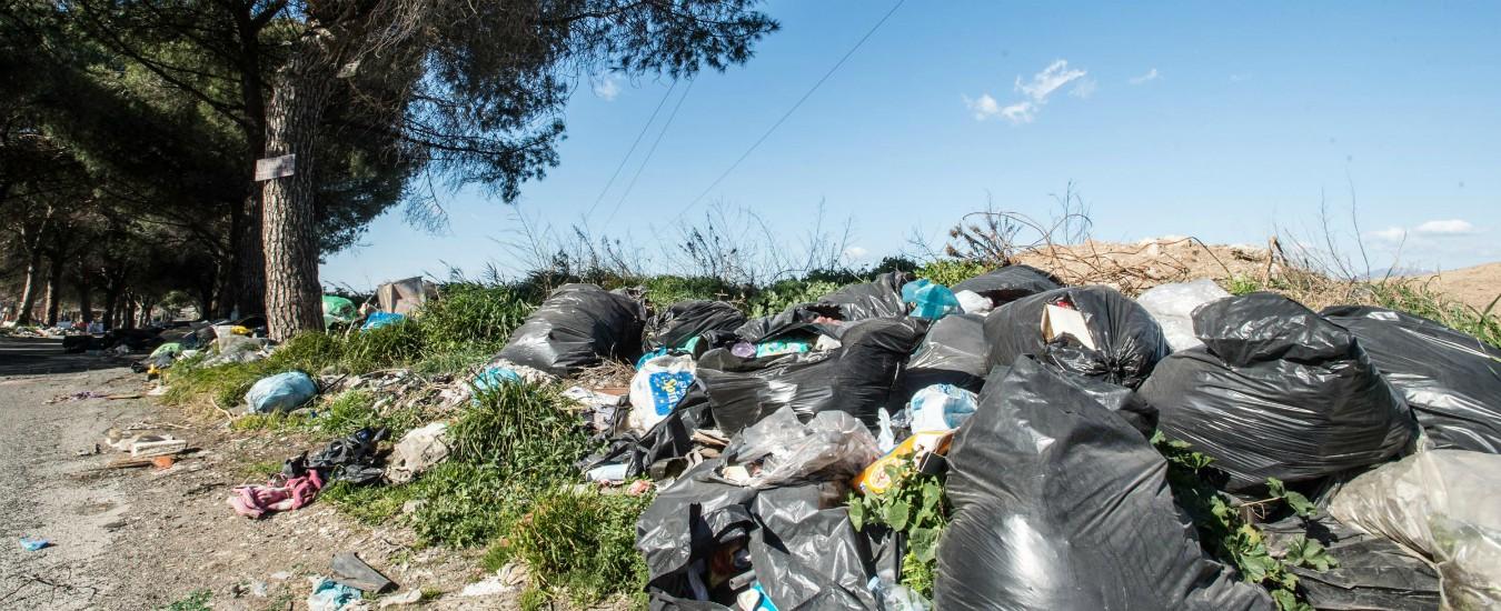 """Ambiente, Italia ha pagato all'Ue 548 milioni in violazioni. Wwf: """"Problemi nella gestione dei rifiuti e delle acque"""""""