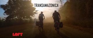 """Transamazonica, là dove l'Amazzonia sembra il Texas: """"Al posto della foresta vergine allevamenti di bovini"""""""