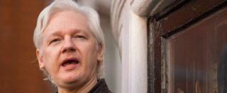 Julian Assange, 50 settimane di reclusione per violazione della libertà provvisoria