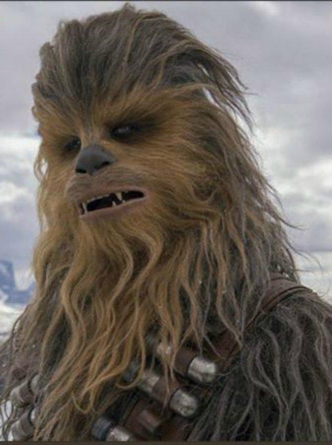 Star Wars, è morto l'attore Peter Mayhew. Interpretò Chewbecca dal 1977 al 2015