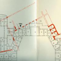 Posizionamento su planimetria della nuova sala della Domus Aurea neroniana