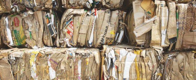 Ecomafie, cosa manca per combattere i reati ambientali? La risposta è semplice