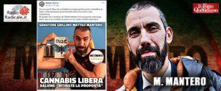 """Cannabis light, Mantero (M5s): """"Salvini vuole solo distrarre dal caso Siri e dai suoi fallimenti nella lotta alla criminalità"""""""