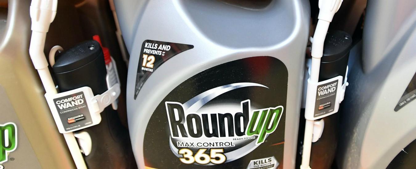 Glifosato, Bayer condannata per il Roundup: è la terza volta. Due miliardi a una coppia che ha contratto il cancro