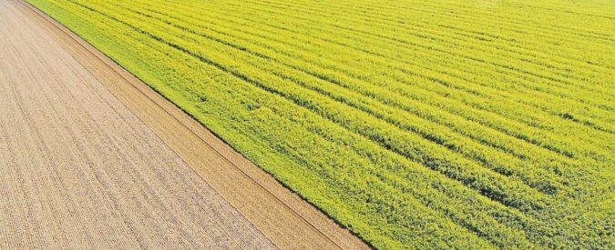 "Fondi Ue ""per l'agricoltura"" pagati addirittura per l'Ilva"