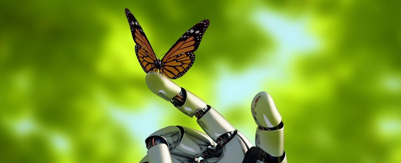 Un robot del MIT che sa se un oggetto è morbido o tagliente prima di afferrarlo