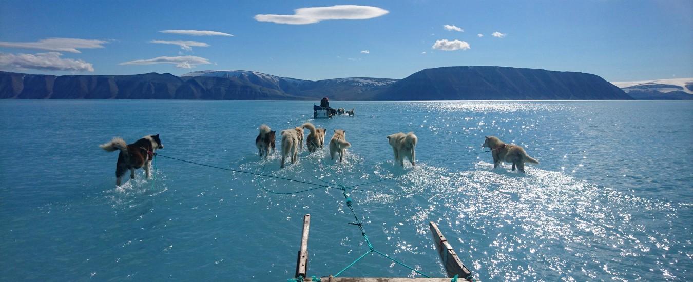 I ghiacci in Groenlandia si sciolgono. Aspettiamo uno tsunami per preoccuparci?