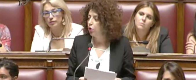 M5s, Vizzini: 'Espulsa prima di voto su dl Sicurezza bis, così garantita obbedienza'. Castelli: 'Non restituiva i soldi'