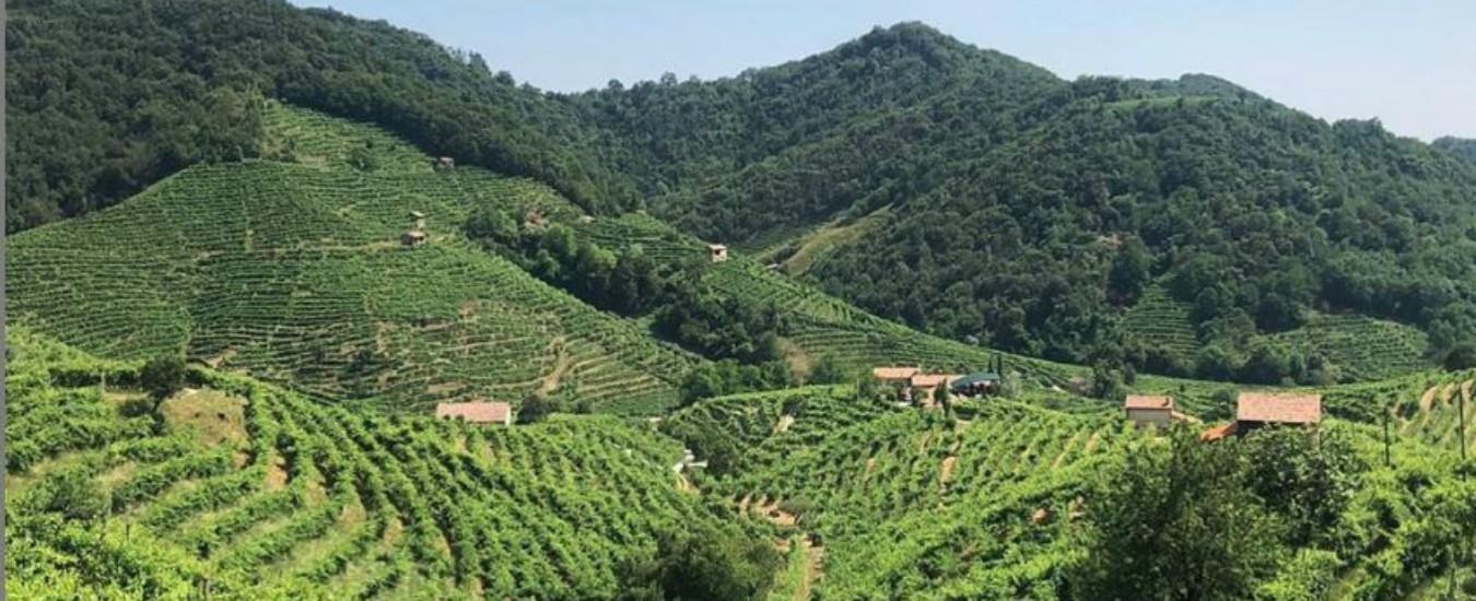 Prosecco, le colline di Conegliano e Valdobbiadene sono patrimonio Unesco