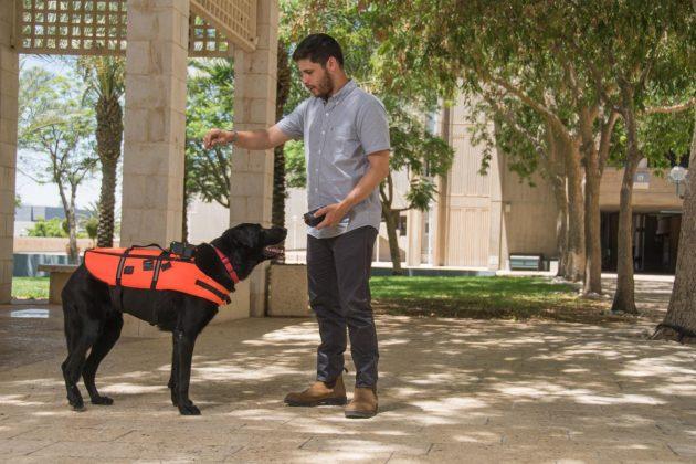 Giubbotto di salvataggio hi tech per cani da soccorso: trasm
