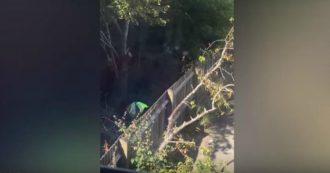 Corriere di Amazon defeca nel giardino di una donna a cui doveva consegnare un pacco: azienda costretta a scusarsi