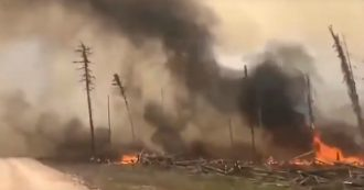 """Artico, in fiamme oltre 3,2 milioni di ettari di foresta tra Siberia e Yakuzia. Greenpeace: """"Disastro ambientale"""""""