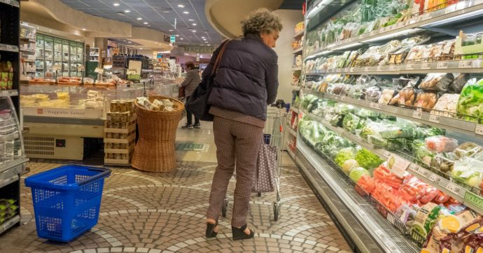 Inflazione, Istat: prezzi rallentano allo 0,5% a luglio. Rincaro del carrello della spesa ma riduzione delle tariffe di luce e gas