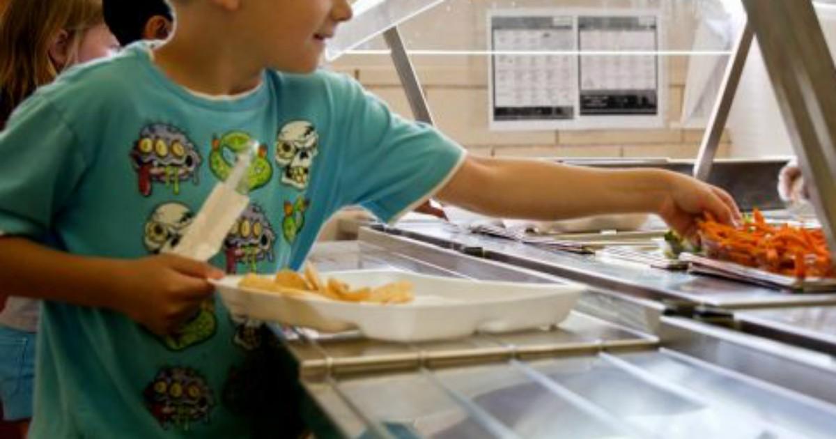 No al panino da casa, mangiare a mensa è l'unico modo per garantire parità a scuola