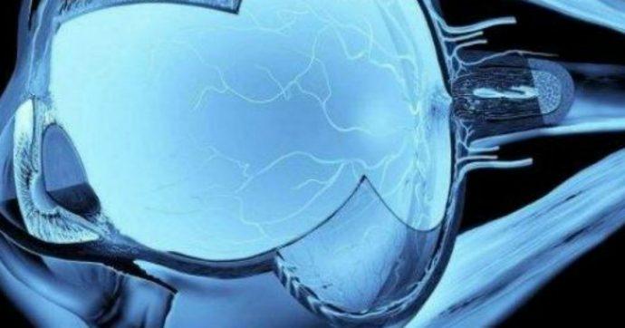 Medicina, creato modello 3D della superficie oculare generato da cellule di un occhio vero: è capace di aprirsi e chiudersi