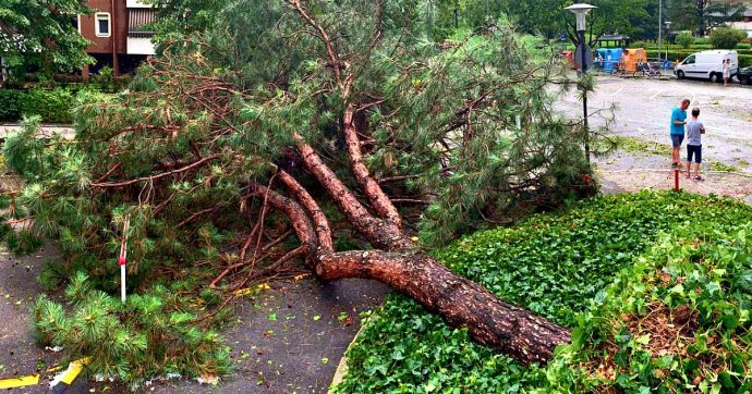 Bolzano, temporale e grandine in città: tetti scoperchiati e sradicati alberi secolari