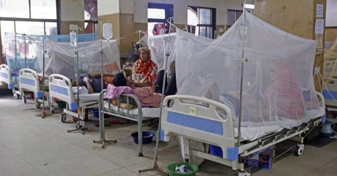 """Dengue, dopo il Bangladesh è allarme anche nelle Filippine: """"I morti sono 622"""""""