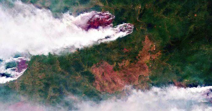 """Siberia in fiamme, Greenpeace: """"Bruciata un'area grande come la Grecia"""". Ignorati 295 incendi: """"Spegnerli costa troppo"""""""