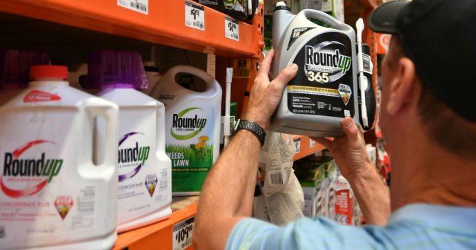 """Glifosato, """"l'intelligence della Monsanto contro chi attaccava il pesticida: giornalisti, attivisti e Neil Young"""""""