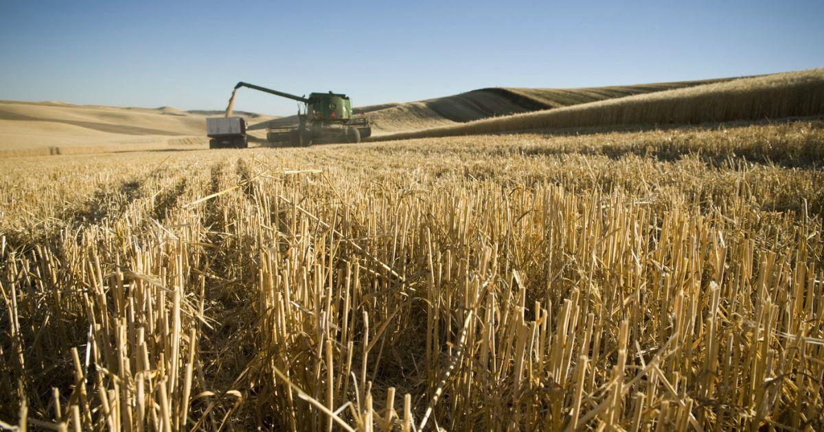agricoltori sito di incontri commerciali