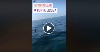 """Cilento, getta bottiglietta in mare e pubblica il video su Instagram: """"La mia barca è plastic free"""". Ministro Costa: """"L'ho denunciato"""""""