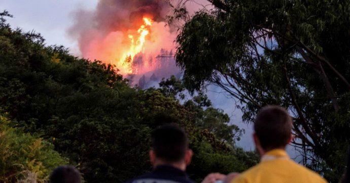 Gran Canaria, gli incendi devastano l'isola: evacuate 8000 persone. Bruciati 3400 ettari