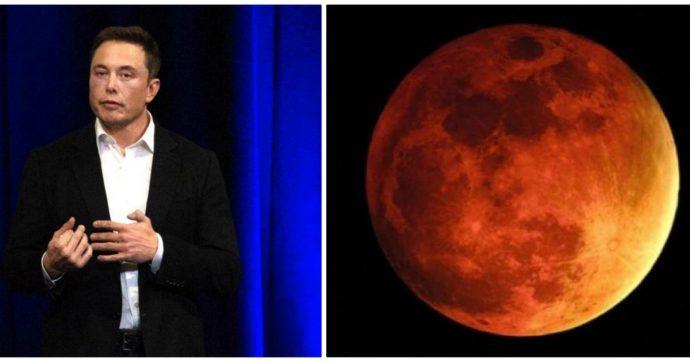 """Elon Musk: """"Bombardiamo Marte con bombe atomiche"""". Ecco il motivo che c'è dietro questa idea del miliardario visionario"""