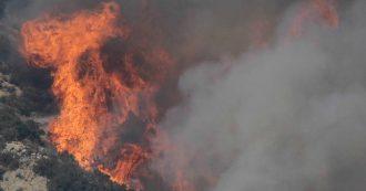 """Amazzonia, record di incendi: 72mila nel 2019, incremento dell'84%. Ambientalisti: """"Colpa della politica di Bolsonaro"""""""