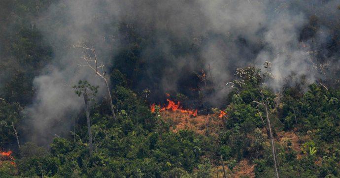 Amazzonia, Macron posta su Twitter una foto degli incendi. Ma l'immagine è di 16 anni fa