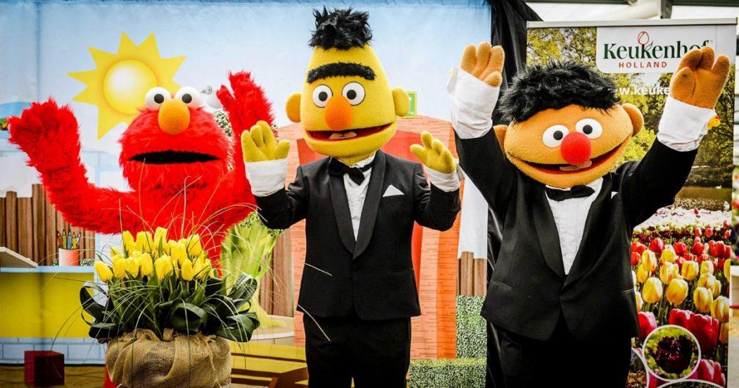 """""""Sesame Street"""": i 50 anni dell'""""altra"""" scuola americana"""
