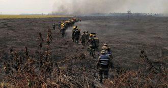"""Amazzonia in fiamme, lo scienziato: """"L'agrobusiness brucia le foreste. Bolsonaro ha riportato il Brasile al colonialismo"""""""