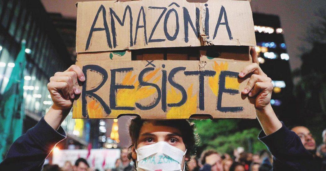 """La """"lobby del bue"""" in Amazzonia non fa prigionieri"""