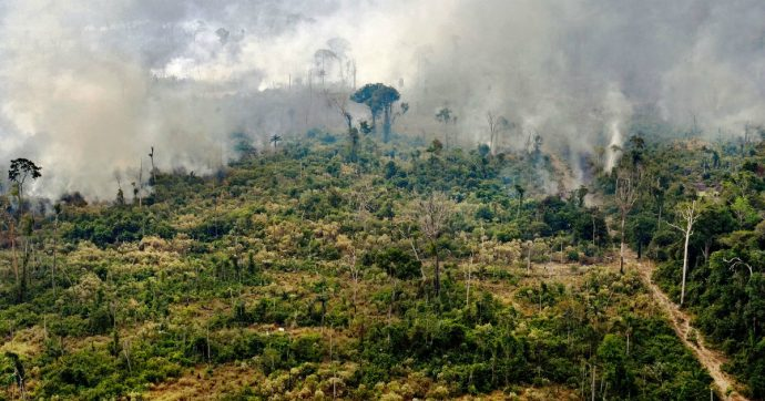 """Amazzonia in fiamme, il Brasile apre inchiesta per roghi dolosi: """"Organizzati su Whatsapp"""". Macron: """"Anche l'Africa è in fiamme"""""""