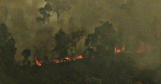"""Amazzonia in fiamme, nuove immagini di Greenpeace: """"Nel 2019 incendi su del 145%"""""""