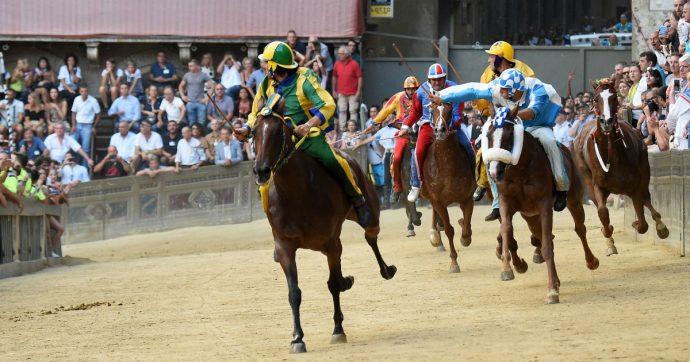 Palio di Siena, lancia bottiglia d'acqua sulla pista durante la corsa dell'Assunta: capogruppo di Fratelli d'Italia si dimette