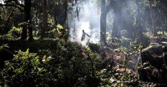 Africa, in Congo e Angola va in fiamme la seconda foresta pluviale più grande del mondo: oltre 10mila incendi in una settimana
