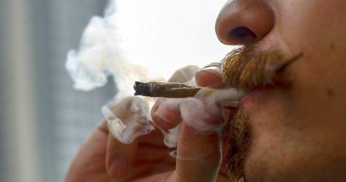 Marijuana, Colorado 5 anni dopo la legalizzazione: record di gettito, ma visite psichiatriche quintuplicate al pronto soccorso