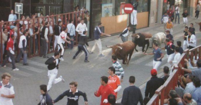 Segovia, uomo muore incornato da un toro durante la festa degli Encierros